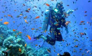 scuba_diving 3
